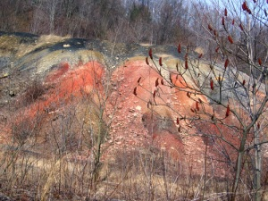 Coal waste along Blacklick Creek