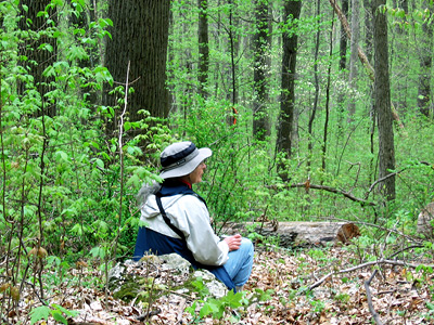 The author resting in the Kerper Tract woods (photo by Bruce Bonta)