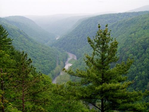 Pine Creek Gorge from Leonard Harrison State Park