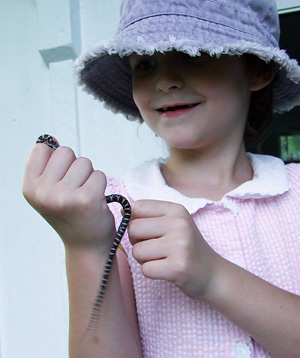 Elanor with milksnake