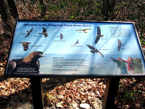 Raptor i.d. signboard at the Allegheny Front Hawk Watch