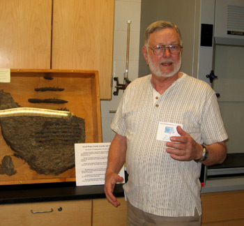 Bob Harris and his social wasp display