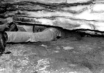Cal Butchkoski often squeezes into tight places in search of Allegheny woodrats