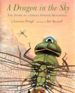 cover of A Dragon in the Sky by Laurence Pringle