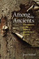 Among the Ancients