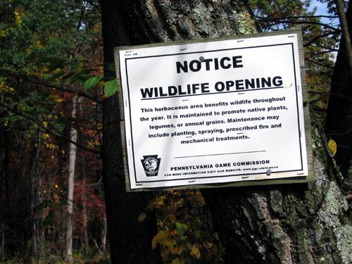 wildlife opening on SGL #108
