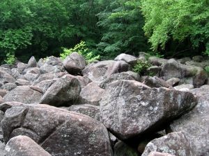 boulder field at Stony Garden