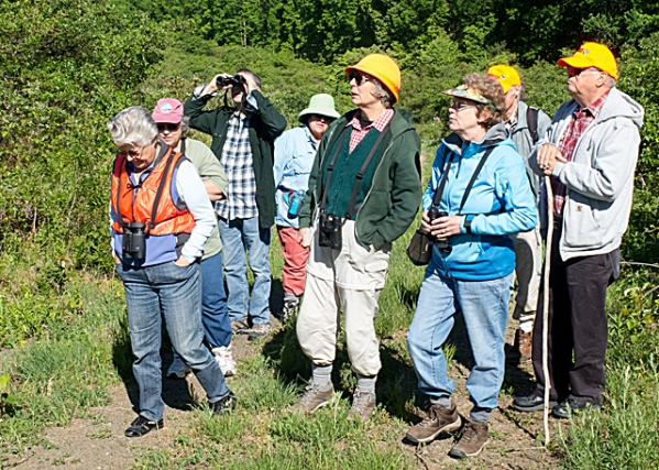 JVAS outing to State Game Lands 322 to search for golden-winged warblers with the author at center and JVAS President Laura Jackson to her left in blue jacket