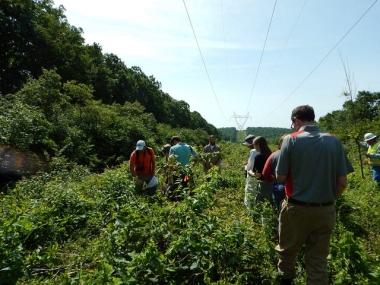 A group of visitors exploring the powerline right-of-way on State Game Lands 33, June 2017