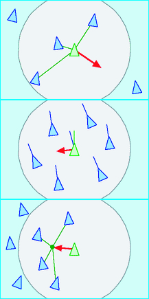 "Craig Reynolds' diagram of the computer model of ""Boids"" flocking behavior, which he describes as following three steering behaviors: top to bottom, separation (steering to avoid crowding), alignment (steering with the average direction of the flock) and cohesion (steering toward the average positions of other birds in the flock). The Wikipedia states that since these images are simple geometry, they are in the public domain."
