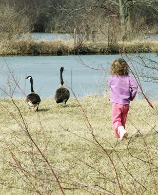 My granddaughter Elanor Bonta in waterfowl mode at Canoe Creek State Park