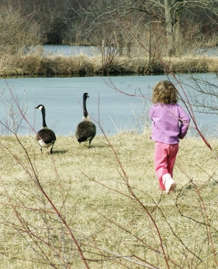 My granddaughter Elanor Bonta in waterfowl mode at Canoe Creek State Park