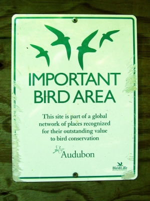 The Important Bird Area sign at the entrance to the hollow, chewed by a porcupine