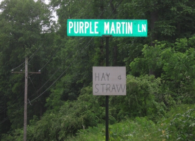 The entrance to Purple Martin Lane in Sinking Valley