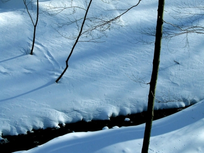 The stream flowing through the snow