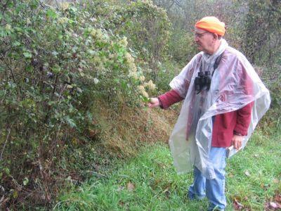 George Mahon, a member of the Juniata Valley Audubon Society, in the Beaverdam area
