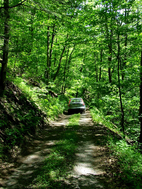 A vehicle coming up the Plummer's Hollow Road (Photo by Dave Bonta on Flickr)